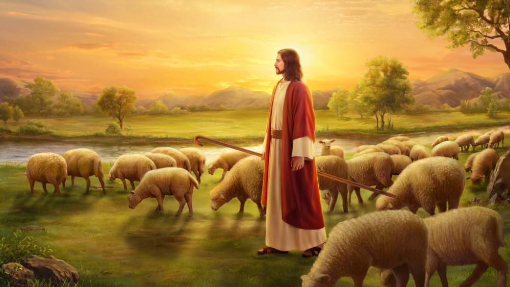 L'opera di Dio e l'opera dell'uomo