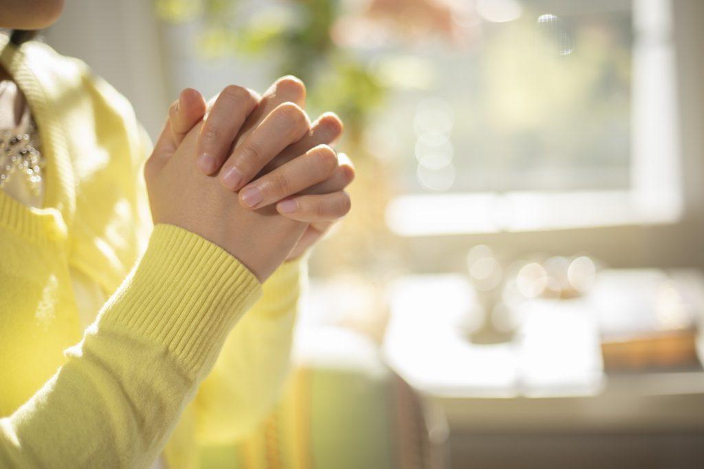 Fare esperienza della cura minuziosa prestata da Dio per la salvezza dell'uomo nel disastro